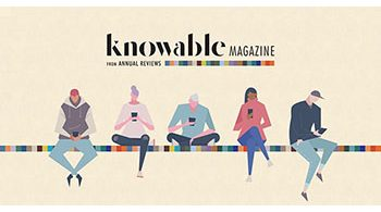 Knowable Mag
