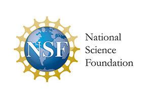 NSF Logo 300x200